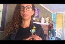 How-to Videos / Some videos on how-tos from plant care to a how to put on a boutonniere. More videos to come.