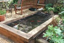 Koi & Fish Ponds / Inspirational ideas for Koi and fish ponds