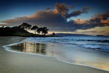 Beach Life / by Tania Hopfensperger