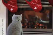 Cats and Christmas / Ready for Christmas