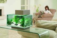 Fluval / Unieke lifestyle aquaria!