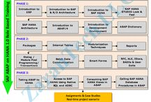 SAP ABAP on HANA Training / SAP ABAP on HANA Training provided Online from USA industry expert trainers with real time project experience. Ph: 515-978-1059. Live & Video training.Duration: 60hrs