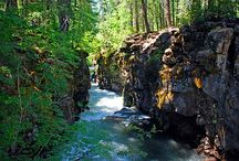 The Oregon Trail / by Jane Kirkpatrick