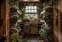 Garten-Blumenhaus