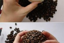 kávéfa