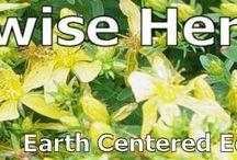 Herbal Homestead Powerpoint Presentations