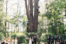 Wedding bonville