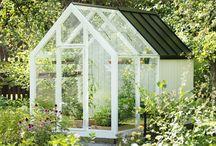 Garden / Ideas for my garden and terrace