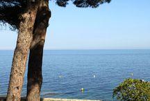 Immobilier bord de mer Haute Corse