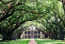 southern comfort {dream home} / by Christine Eddie