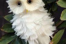 Corujas /  Como não amar corujas! Quando olhamos para os olhos de uma coruja , é como se ela arrancasse de dentro de nós todos os segredos mais obscuros e nos libertasse dos maiores medos. É como se estivesse nos ensinando a não temer nada e nem ninguém ! (Karolyne Reis)