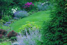 Giardini da sogno / Giardinaggio