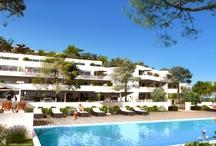 Properties in Corsica