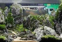 Aquascaping Hardscape / Aquascaping aquarium fishtank hardscape