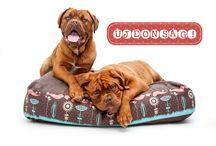 Spring Collection Dog Bed / A Petbag kutyafekhely tavaszi kollekciója a megszokott kényelemmel és minőségben