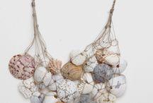 Shells, seashore, driftwood