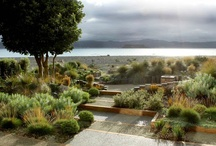 Garden on landscape...