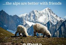Alpenwild Promotions