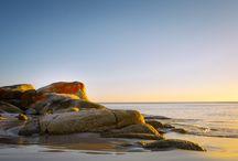 Bay of Fires TAS / Best of Bay of Fires, Tasmania. Explore, shop, eat, visit www.letsgosomewhere.com.au