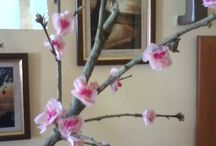 fiori di Pasqua