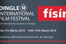 2014 Dingle Film Festival  / Telling a DIFFerent story