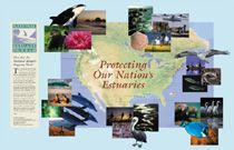 National Estuary Programs (NEP)