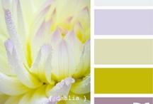 Love: Color