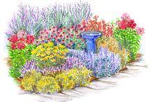 Gardening / by Sara Peterson