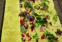Eco Printing. Natural dyes