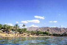 Jordan / At rejse på ferie i gæstfrie Jordan er et minde for livet! Her kan du kombinere skønne badedage i Det Røde Hav med udflugter til spændende og myteomspundne seværdigheder. Se mere på www.apollorejser.dk