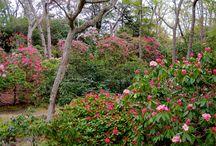 The Garden Tourist / Garden destinations in the Northeast