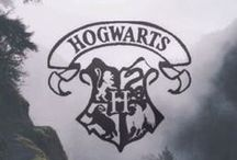HP ⚡️