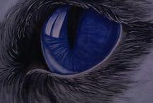 mes peintures / acrylique huile aquarelle