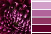 PANTONES AND COLORS