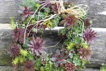 Wreaths! / by Peggy Keel Burton