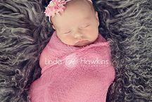Newborn Photography / by Ellen Bergmann