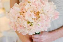 flowers. / by Sierra Fisher