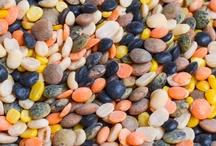 Autumn Blend Bean Soup