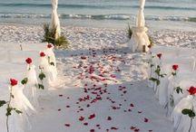 beach wedding / by Lauren Brown