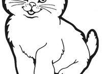 Pintura e Riscos de Gatos