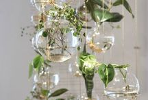 Terrarium glass planter