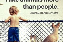 Quotes and Sayings: For Animal Lovers! / Just the perfect little quote or saying.  The one that inspires us to pause (or paws) and think twice about our animal friends.  Dogs, cats, fish, birds, horses, pigs, chickens, alpacas, hamster,snakes, lizards, and the list goes on!  We love them all.