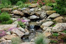 A (Secret) Garden / Ideas
