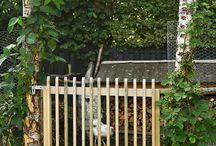 Hegn og hæk | Fence and hedge / Her finder du inspiration og en masse tips til, hvordan hækken skal klippes, og hvordan du passer godt på hegnet omkring et hus.