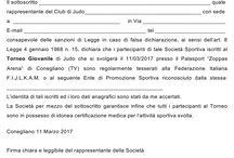 Torneo Vittorio Veneto 2017