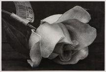Flowers in Art 3