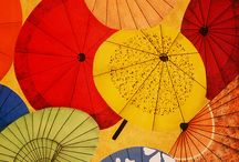Japanese umbrellas / by Rae Nell Marlowe