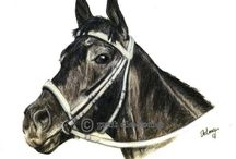 Race Horses In Art 06- Notable American Raced Fillies