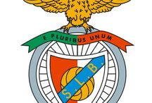 SLB- Benfica 4 Ever / Benfica Always!!! / by Silvia Freire