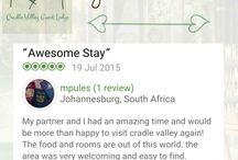 Guest Reviews TripAdvisor